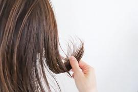 秋に気になる髪のパサつき、原因は夏に受けたダメージ!?