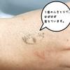 2020-01-18 11:20:30 by gura_chanさん