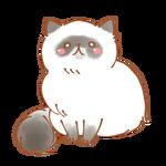 雪猫★彡さん