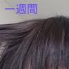 CYMERA_20191006_113349.jpg by banajuさん