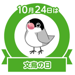 2020-10-28 00:43:10