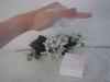 2010-06-04 15:17:12 by かやんちゃんさん