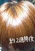 2010-11-17 01:13:35 by MTKさん