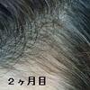2 by @SACHIさん