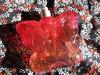 2011-11-29 14:56:39 by 桃果。さん
