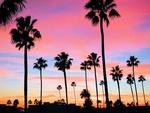 カリフォルニア サンセット