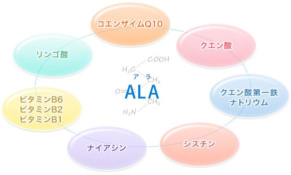 アラプラス coq10 に対する画像結果