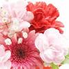 桜823さん