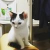 kanon_raraさん