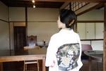 shamisenist.maikoさん