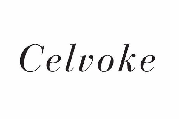 セルヴォーク Celvokeの求人の写真1