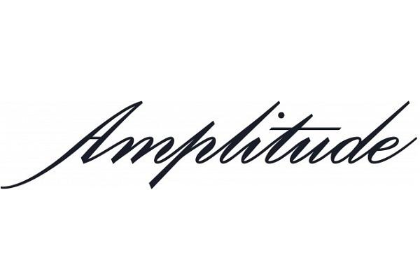 アンプリチュード Amplitudeの求人の写真1