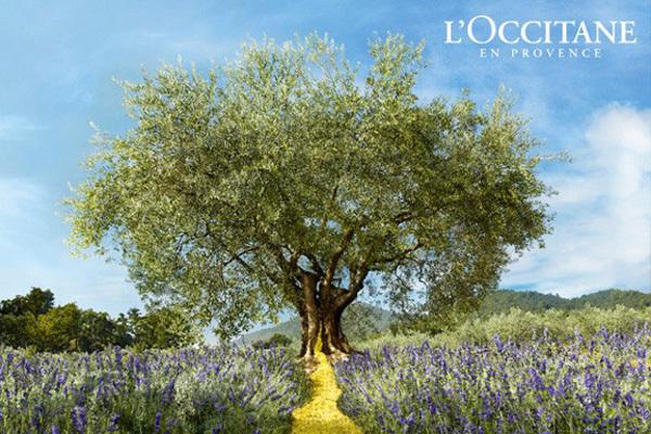 ロクシタン L'OCCITANEの求人の写真3