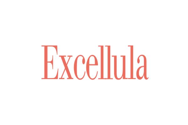 エクセルーラ Excellulaの求人の写真1