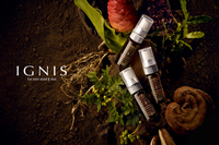 国産の植物由来成分や香りにこだわった『イグニス』