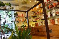 植物の緑とアロマに囲まれた癒しの店内