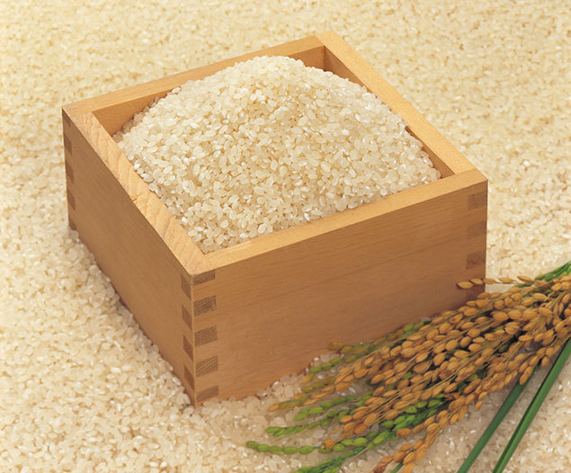 日本のお米に秘められた美容パワー お米の美容エキス「ライスパワー®No.11」とは