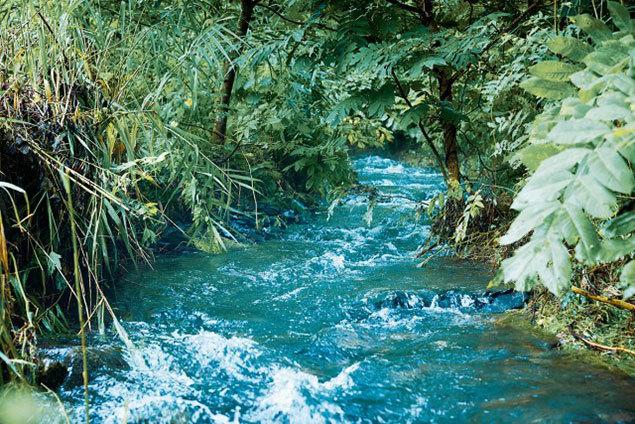 日本の水は肌にも美味しい。雨水や雪どけ水が岩盤で濾過された「釜石の水」