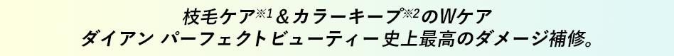 枝毛ケア※1&カラーキープ※2のWケア ダイアン パーフェクトビューティー史上最高のダメージ補修。