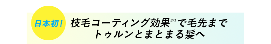 日本初 枝毛コーティング効果※1で毛先までトゥルンとまとまる髪へ