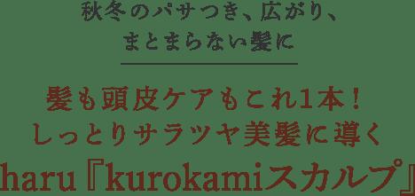 秋冬のパサつき、広がり、まとまらない髪に 髪も頭皮ケアもこれ1本! しっとりサラツヤ美髪に導くharu『kurokamiスカルプ』